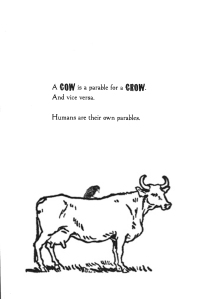 12-cow-is-crow